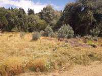 Terrenos O Lotes Venta San Carlos De Bariloche - U$S 30.000