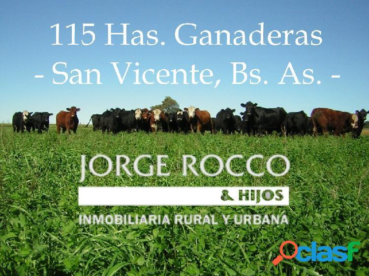 115 Has. ganderas en San Vicente.