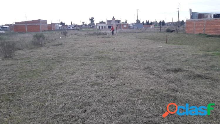 170 e/ 528 y 529, Melchor Romero, La Plata