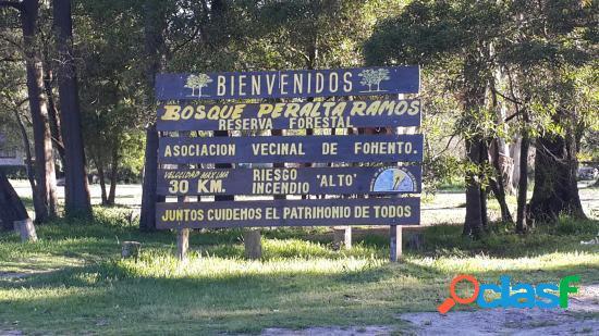 Terreno Bosque Peralta Ramos 450 M2.