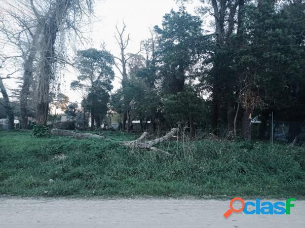 Venta Lote en Reserva Forestal Barrio El Tejado